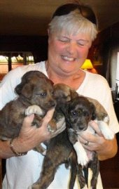 janice (A.I.D) with 4 of the 5 pups rescued