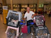 joe at malaga airport with 9 rescue dogs