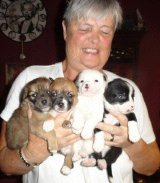 janice with the 4 rescued pups