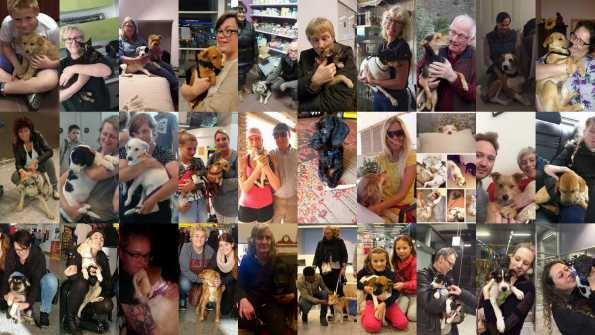 some of our adopted dogs with their families