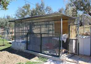 kennels in foster homes