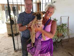mona has been adopted
