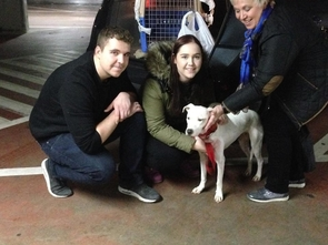 ozzy arrives at airport and meets his new family